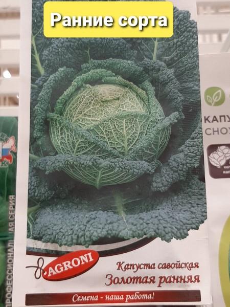 Какие сорта капусты лучше всего высаживать, рекомендации садоводов