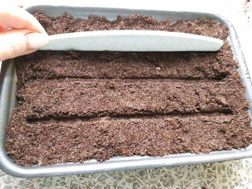 Меняю агротехнику, сею петунию вновь, и какую мини тепличку мы сделали для рассады