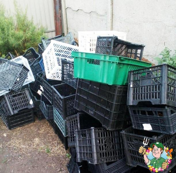 """""""Пластиковые ящики - отличный помощник в огороде"""". Интересные способы, как моя сестра использует ящики в саду"""