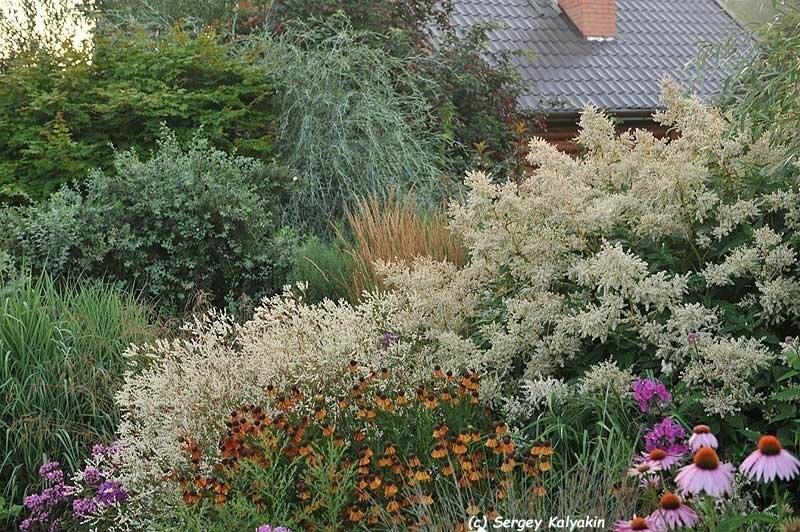 88 идей, как украсить сад цветами