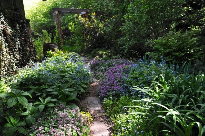 Недисциплинированный сад: как сделать красивым?