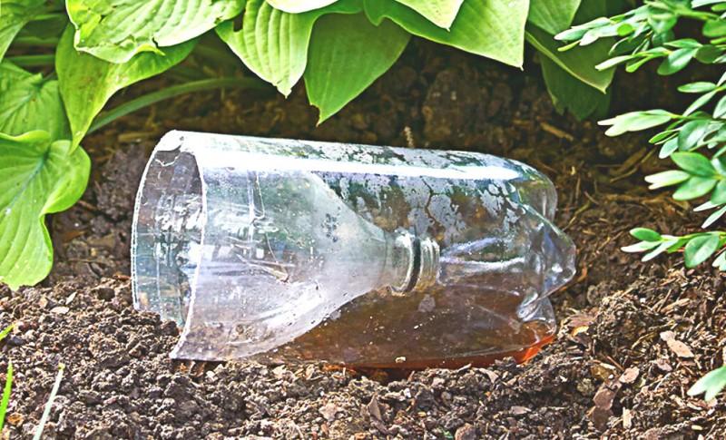 """""""Пластиковые бутылки для огорода"""": расскажу о нескольких вариантах применения."""