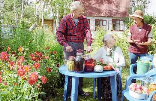 Причины, по которым не стоит отказываться от садового участка