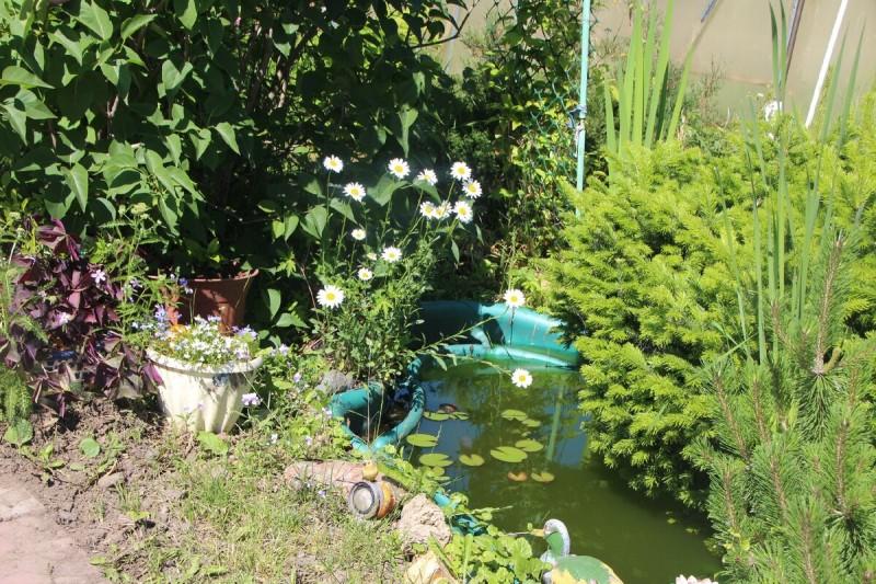 Шесть вариантов устройства декоративного водоема на садовом участке