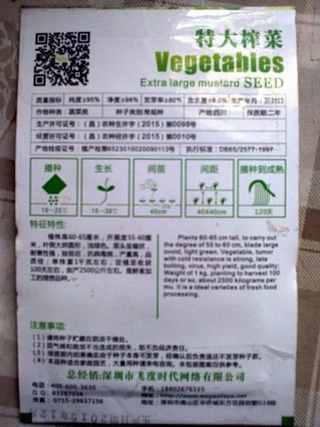 Сычуаньская капуста. Опыт выращивания (часть 2)