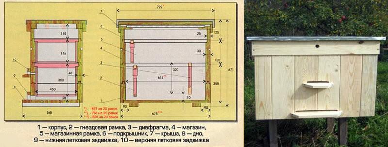 Типы пчелиных ульев: конструкции и характеристика