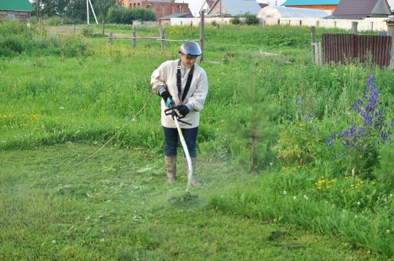 Во саду ли в огороде тоже действует закон подлости