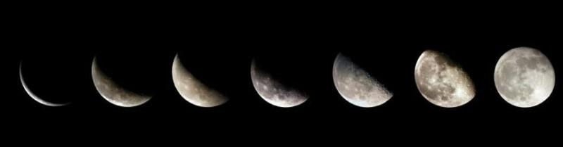 Что можно высевать и высаживать с 28 апреля по 3 мая? Лунный календарь от компании «Гавриш»