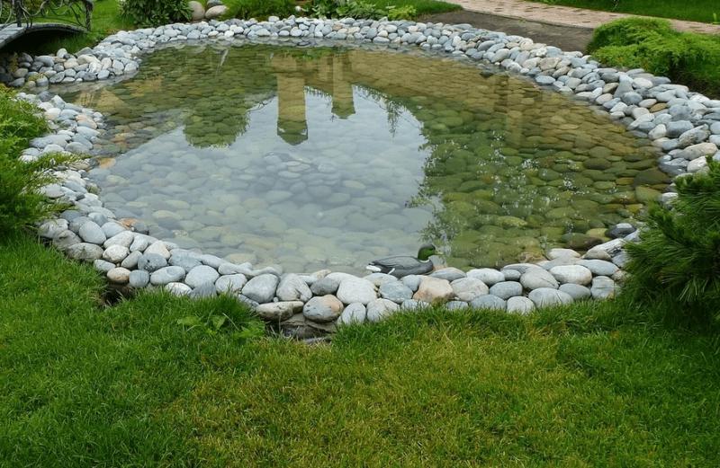 Красивый домашний пруд. Как быстро и недорого самостоятельно сделать небольшой водоем?