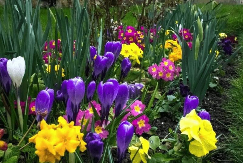 Лунный календарь с 25 апреля по 1 мая