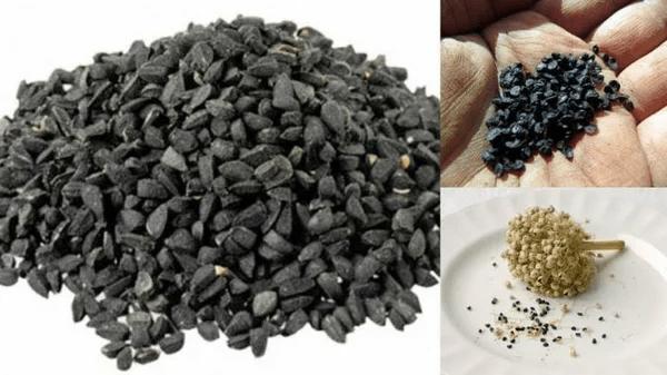 Наш любимый Лук-батун: Как сеять лук-батун в открытый грунт: подробное описание и советы по выращиванию