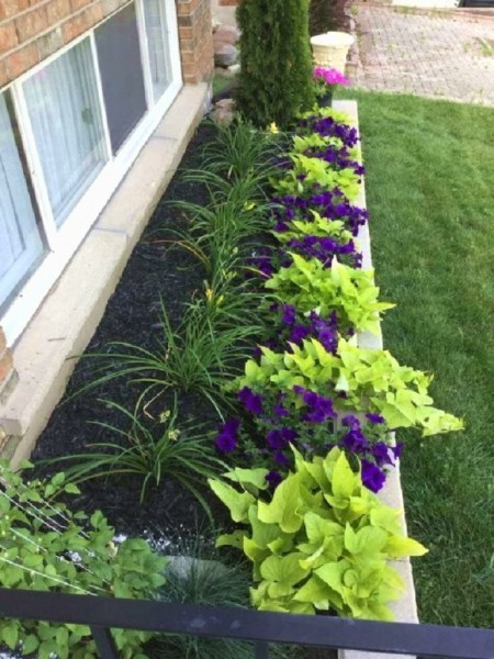 Как красиво оформить садовый участок: изумительные идеи