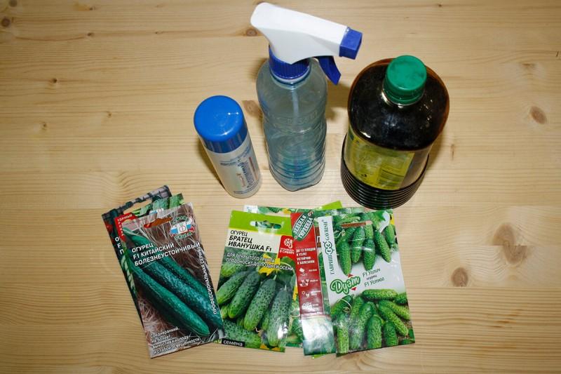 Мой метод выращивания огурцов без вредителей и корневых гнилей. Высокая урожайность до самого снега