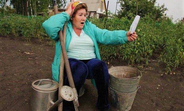 Новые штрафы для садоводов и огородников начали действовать уже с 1 июня