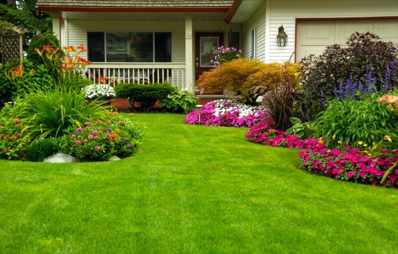 Так просто: крутые фишки, которые превратят ваш участок в сад с обложки