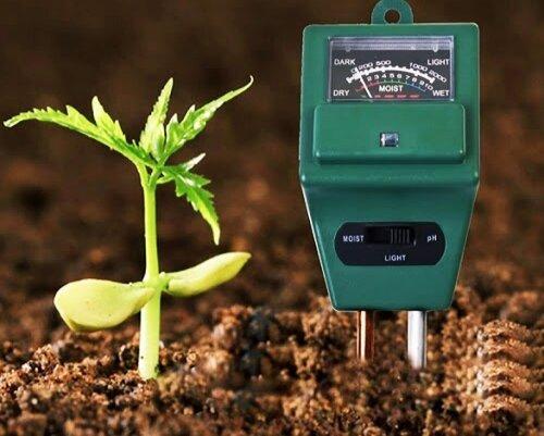 Как определить кислотность почвы на своем участке. Самый простой способ