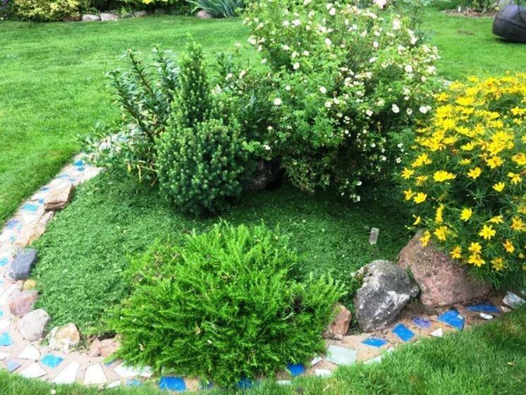 Как сделать, чтобы клумба была продолжением газона?