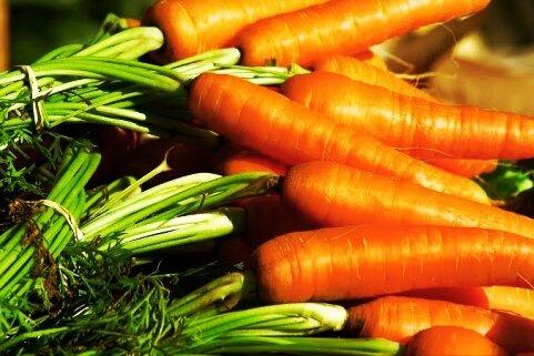 Лучшая подкормка моркови в июле. Применяя ее морковь вырастит крупной на зависть всем соседям