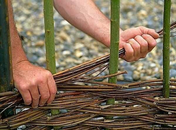 Бесплатный забор без опор, фундамента на 50 лет: изгородь своими руками (не хуже туи)