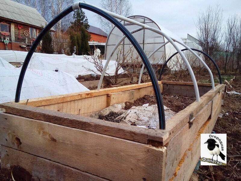Теплая грядка-короб с открывающейся крышкой, в которой у меня растут арбузы