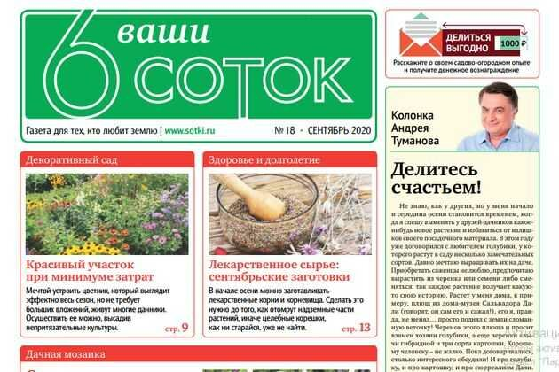 Вышел в свет второй сентябрьский номер газеты «Ваши 6 соток»