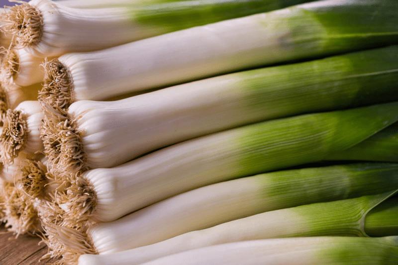 Лук-порей: приемы выращивания высокой белой ножки