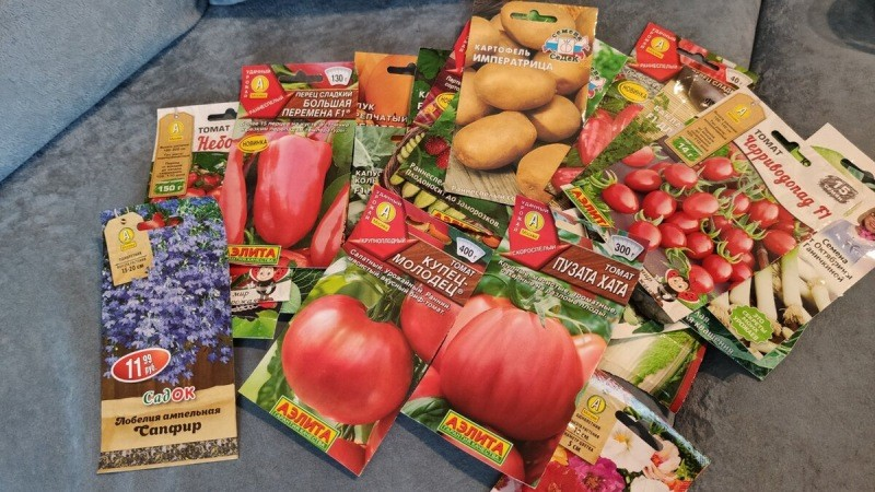 Начинаю отбор семян на следующий год. Рекомендую то, что сама сажала и довольна