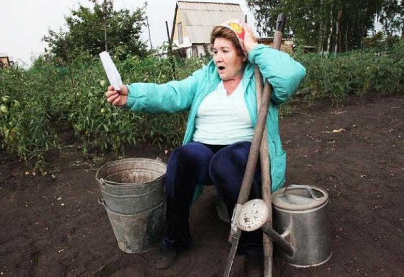 Картошка, вода, мусор: за что еще дачник может получить штраф
