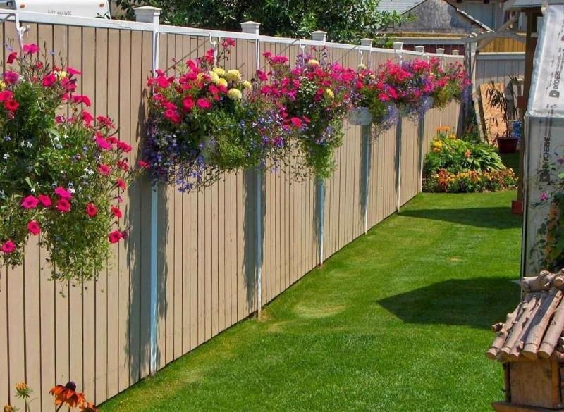 🌸Какие растения можно посадить возле дома?🌸