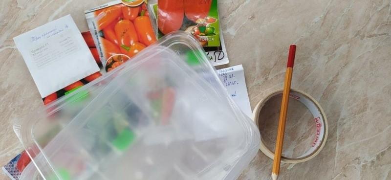 Посеять перец на рассаду: десять простых уточнений к посеву перца
