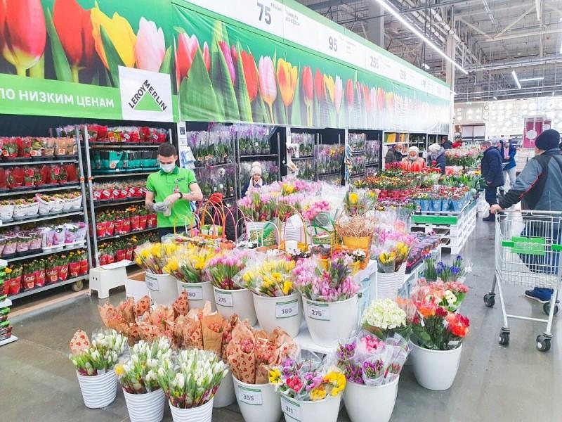 В Леруа Мерлен много цветов по хорошим ценам: выбрали подарки на 8 марта