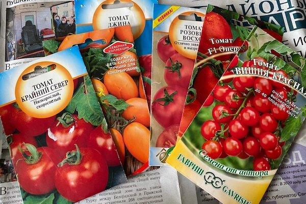 Всего 4 дня в марте будут идеальны для посева помидоров, и они еще впереди. Какие и почему?