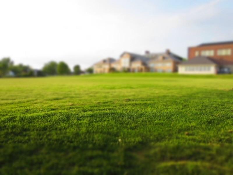 Какие изменения ждут дачников и садоводов летом 2021: 3 хорошие и 3 плохие новости